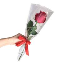Rosa Embalada-Vermelha
